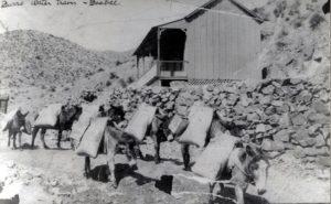 Original Arizona Burros | Phoenix Arizona